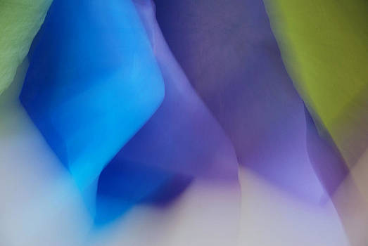 Color Crimp by Lorenzo Cassina