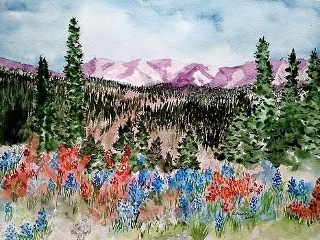 Colorado Meadow by B Kathleen Fannin
