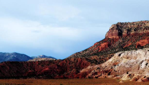 Terry Eve Tanner - Colorado Plateau