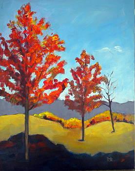 Colorado Red by Sally Bullers