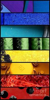Marlene Burns - Coloration