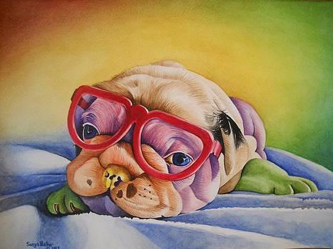 Colorful Cutie by Sonya Walker