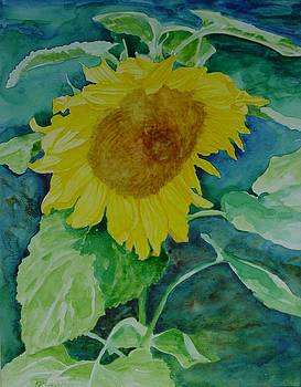 Colorful Original Watercolor Sunflower by K Joann Russell