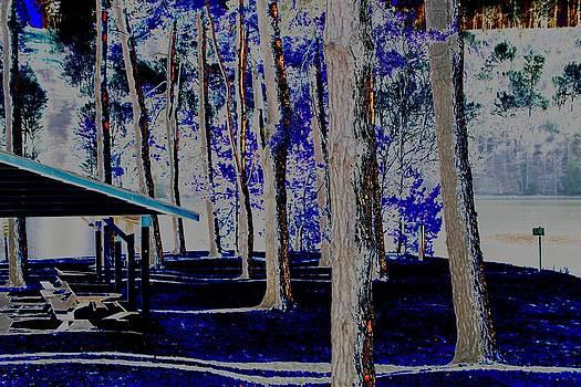 Colorful Park by Gary Pavlosky