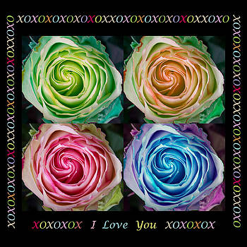 James BO  Insogna - Colorful Rose Spirals With Love