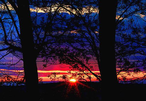Colorful Sunset by David M Jones