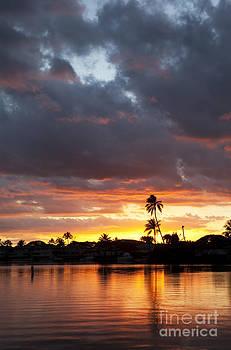 Charmian Vistaunet - Colorful Tropical Sunset