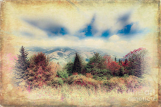 Dan Carmichael - Colorful View in the Blue Ridge