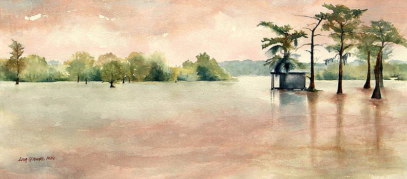 Colors of the Bayou by Lisa Pope