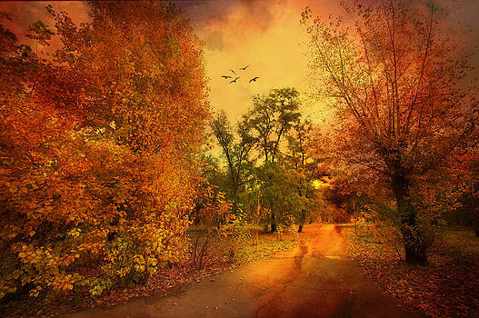 Svetlana Sewell - Colours of Atumn