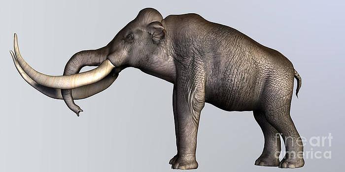 Corey Ford - Columbian Mammoth Side Profile