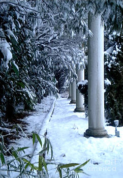 Column in the Snow by Simonne Mina