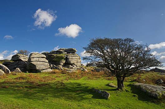 Combshead Tor Dartmoor by Pete Hemington