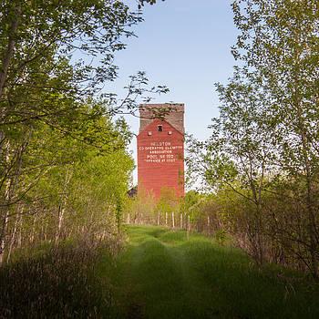 Grain Elevator in Corridor of Trees by Steve Boyko