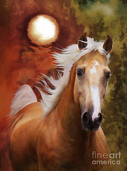 Comin' Home by Melinda Hughes-Berland