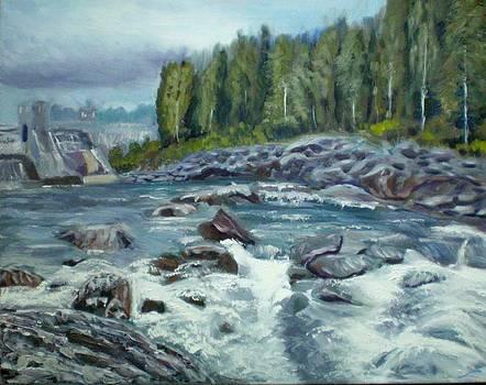 Coming water by Elena Sokolova