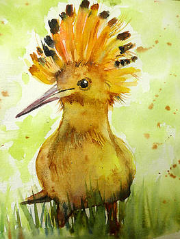 Common Hoopoe by Charu Jain
