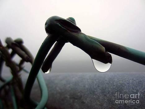 Condensation  By Jen Seel by Skip Stutler