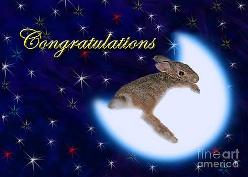 Jeanette K - Congratulations Bunny Rabbit