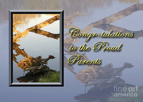 Jeanette K - Congratulations to the Proud Parents Fish