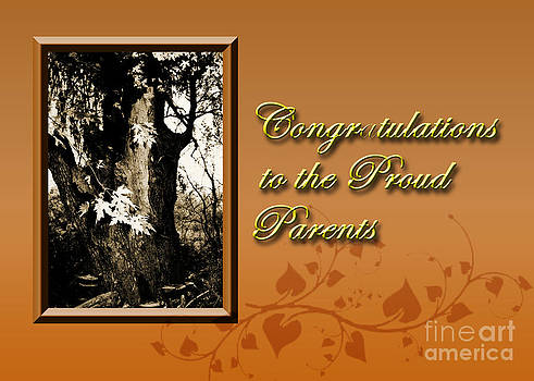 Jeanette K - Congratulations to the Proud Parents Willow Tree