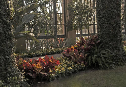 Conservatory at Longwood by Kimberly Long
