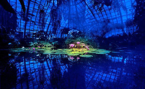 Daniel Furon - Conservatory