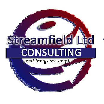 Consulting Logo by Jose Luis Cezon Garcia