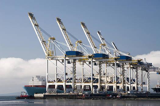 Container Terminal by Volodymyr Kyrylyuk