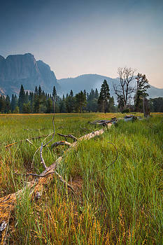 Cook's Meadow by Mike Lee