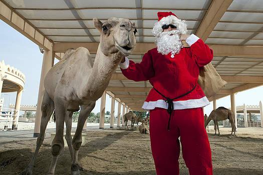 Cool Santa by Armando Dodi