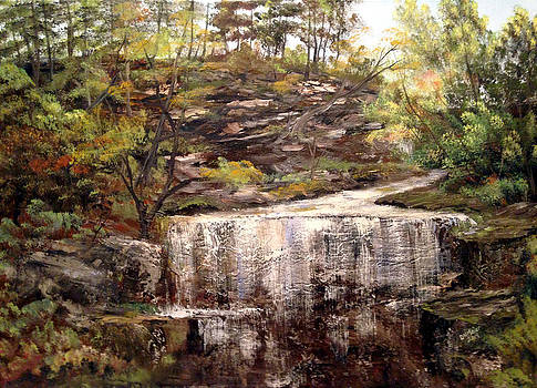 Cool Waterfall by Dorothy Maier