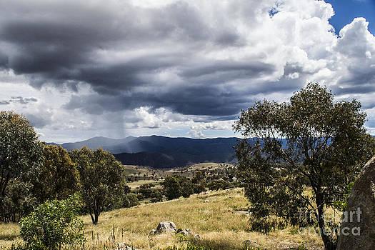 Cooleman Ridge  by Angela DeFrias