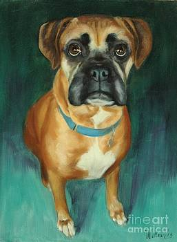 Cooper the Boxer by Pet Whimsy  Portraits