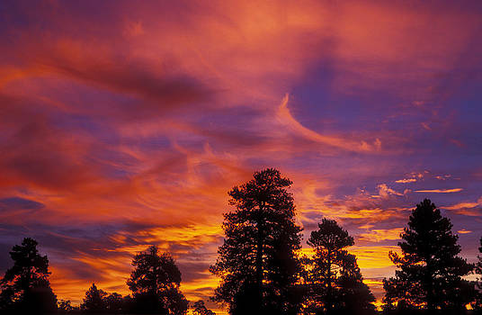 Fire in the Sky by Russ Bishop