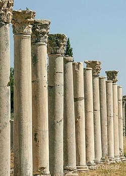 Sabrina L Ryan - Corinthian Columns In Turkey