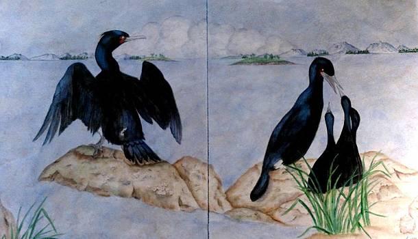 Cormorant Family by Sandra Maddox