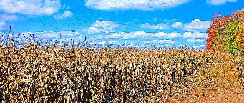 Corn field by Bob Northway