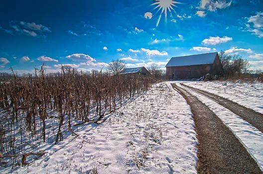 Randall Branham - Corn Patch and the Farm