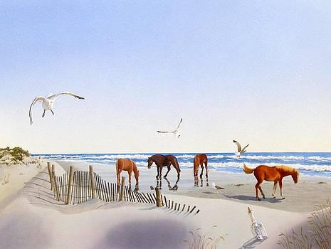 Corolla Beach by C Robert Follett