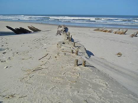 Corolla Shipwreck by Jeff Moose