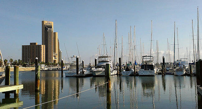 Corpus Christi Texas Water Front by Janet Maloy
