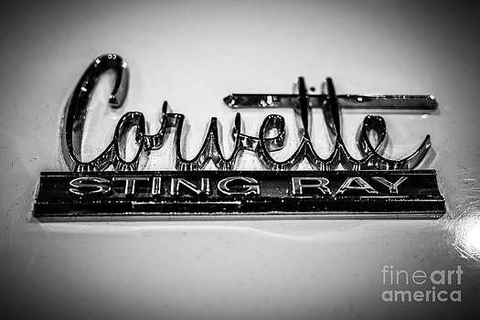 Paul Velgos - Corvette Sting Ray Emblem