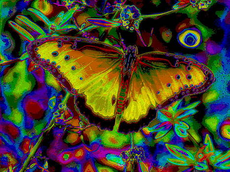 Cosmic Butterfly by Rebecca Flaig