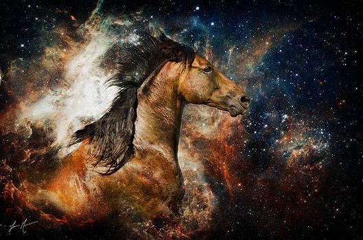 Cosmic Creation by Jamie Mammano
