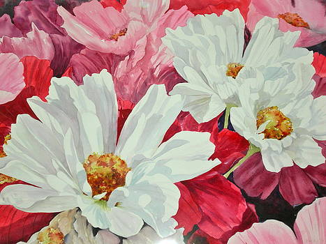 Cosmos in Bloom by Becky Taylor Fine Art