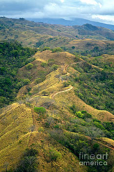 Costa Rica Scenic Landscape by Carrie Cranwill