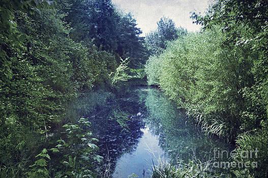 Svetlana Sewell - Cosy Lake