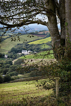 Cottage In The Valley by Michael Carter