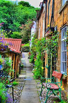 Cottage Row by Dave Woodbridge